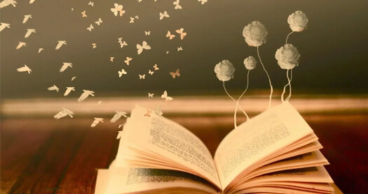 Чтение книг разного жанра